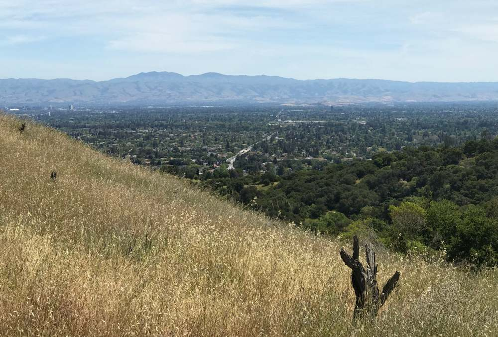 Looking towards the valley south of San Jose.