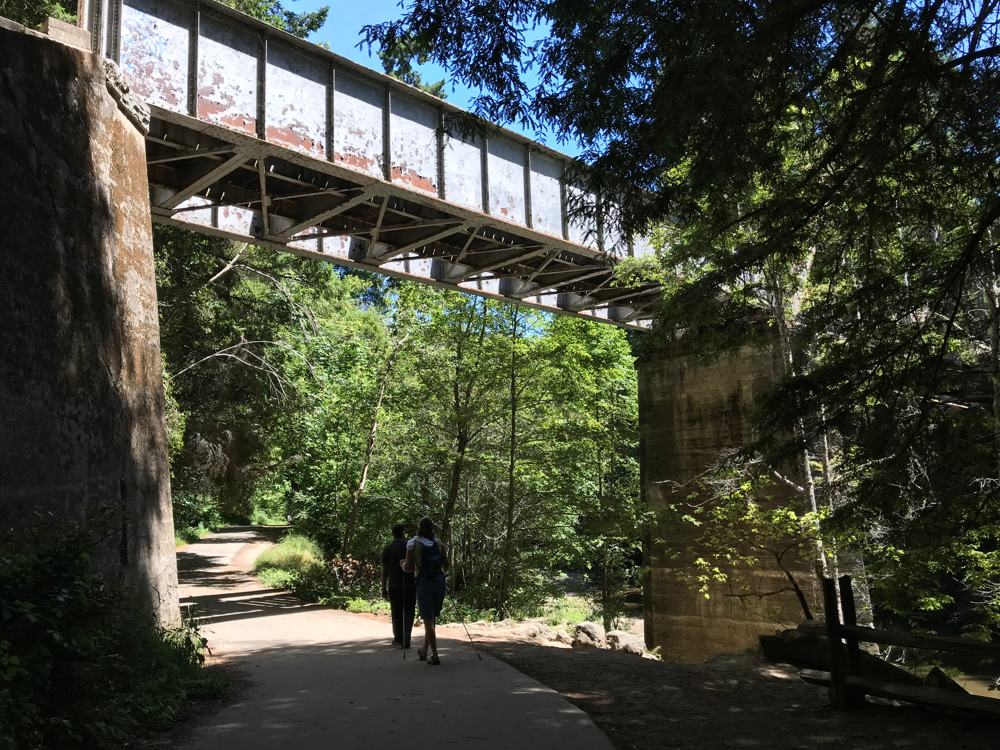 Hiking under a train bridge at Henry Cowell State Park.