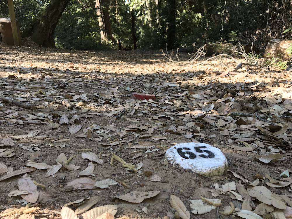 Markers near the archery targets