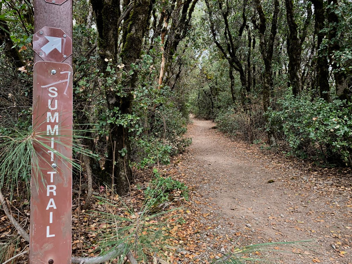 Summit trail was enclosed.