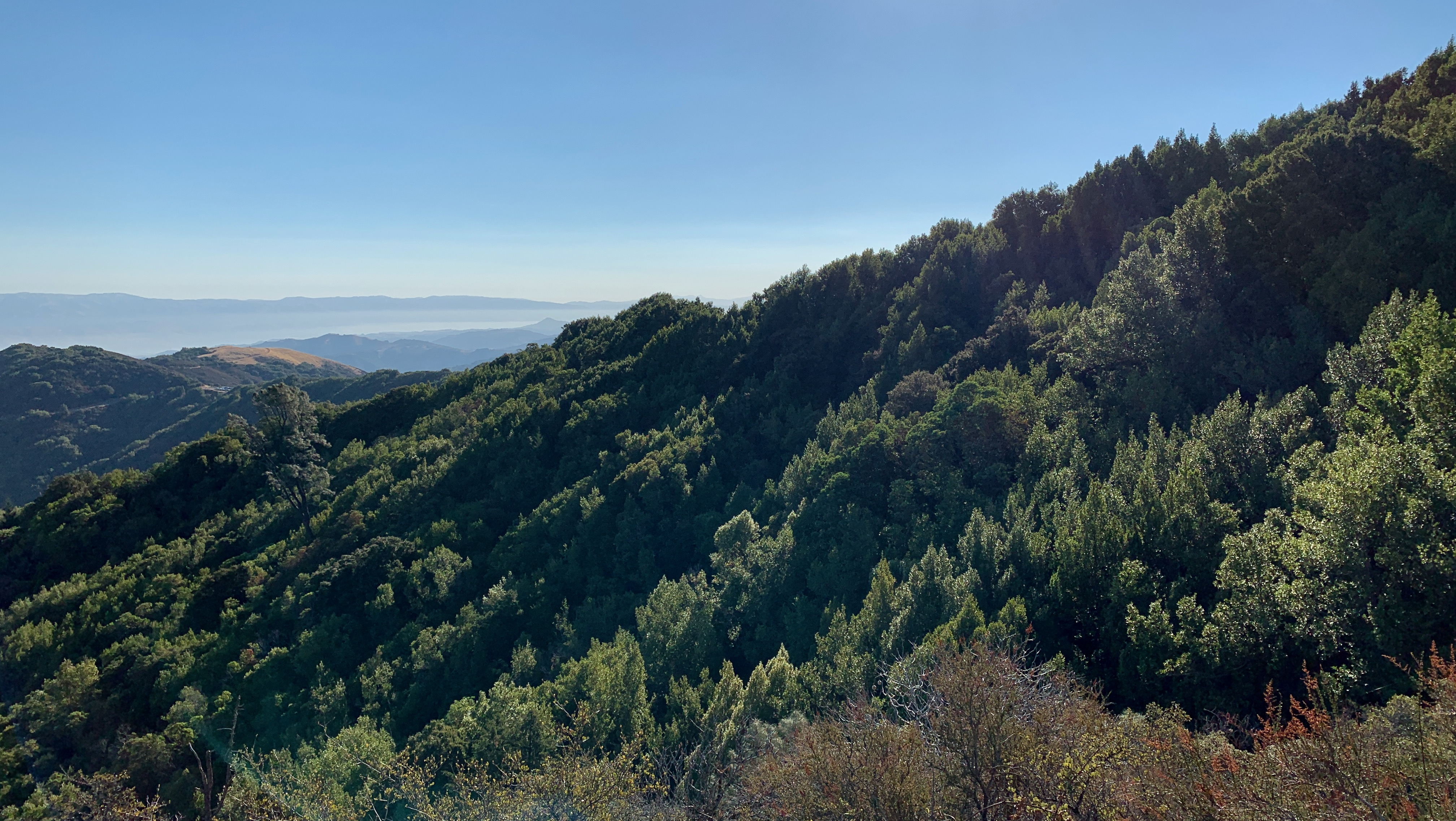 View from the Guadalupe Creek overlook.