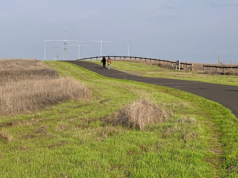 Wide, paved road of a trail