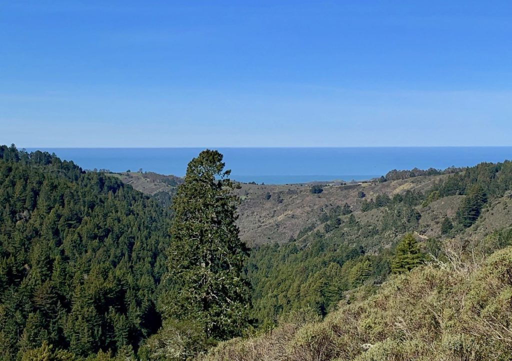 Pacific Ocean view from the hills