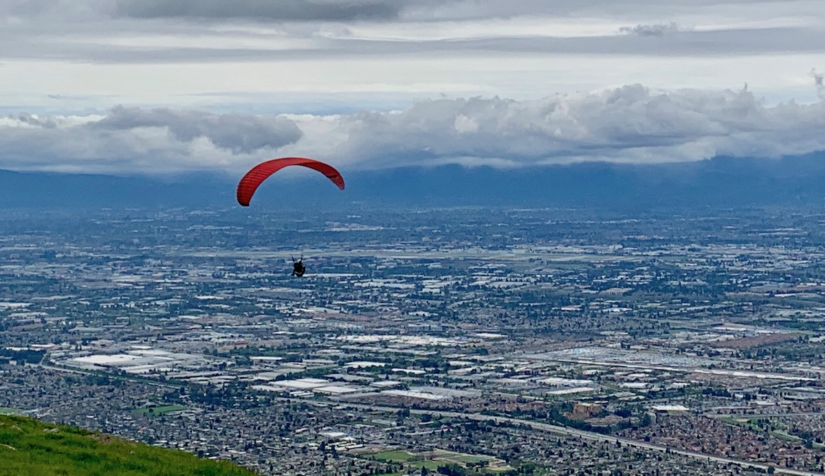 Paraglider and city backdrop