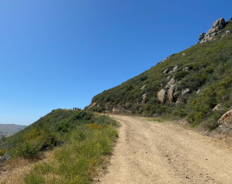 Jeep road and trail to the summit